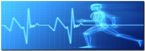 sport a zdravie